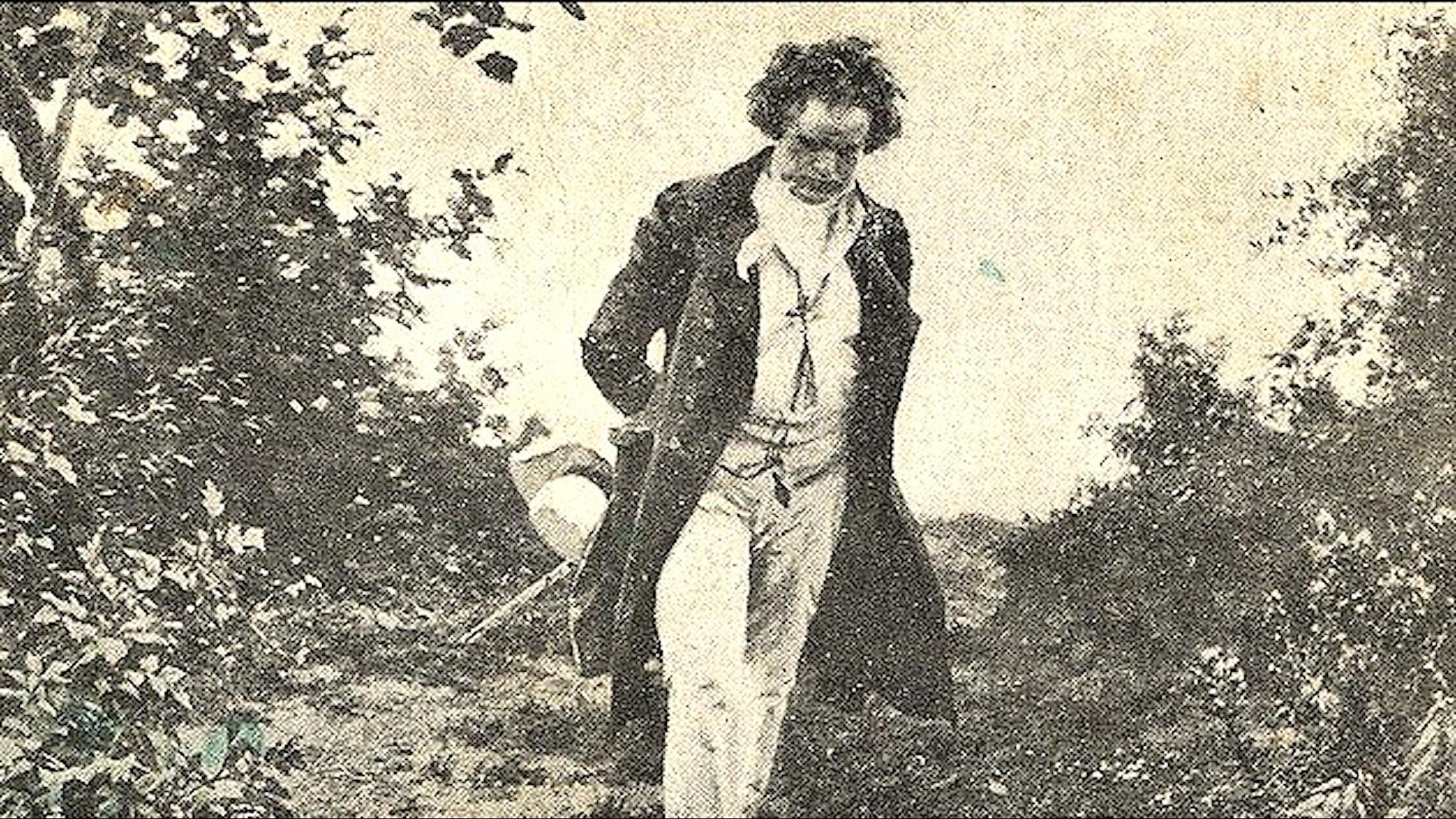 Beethoven promenerar i naturen. Julius Schmid. Wikimedia.