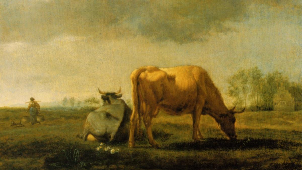 'Kor på en äng'. Adriaen van de Velde (1658).