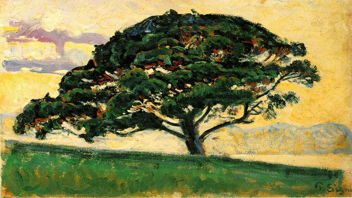 'Le Pin Saint Tropez'. Paul Signac (1882-83).