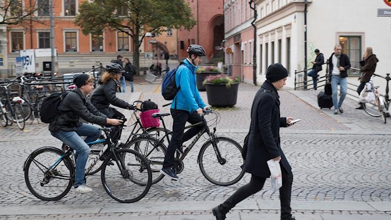 مسیر دوچرخه و پیادهروها