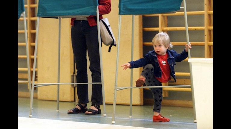 بر شمار رای دهندگان افزوده می شود  Foto: Tobias Röstlund/TT