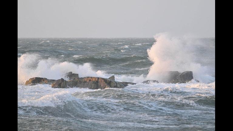 تولید انرژی از امواج دریا  Foto: Hans Olofsson/ Flickr