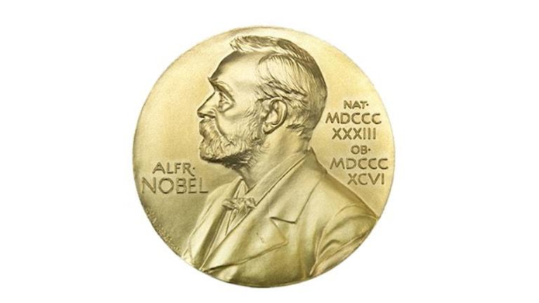 سابقه و تاریخ طولانی جایزه نوبل و ارزش مادی زیاد این جایزه، اهمیتی کیفی به آن داده است. .Foto: Lars Pehrson/TT