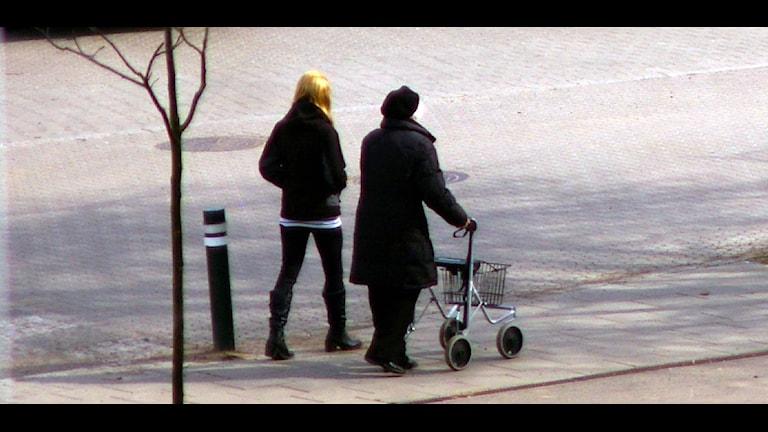 بیست دقیقه راه پیمایی در روز، مرگ را به تاخیر می اندازد Foto: Christer/Flickr