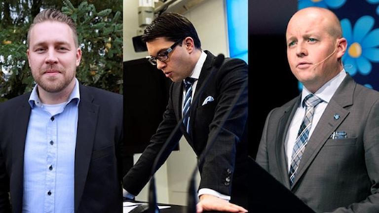 از جنگ قدرت در حزب دموکرات های سوئد خبر داده می شود. از راست: بیورن سوئد دبیرسیاسی، جیمی اُکِسوُن رهبر و ماتیاس کارلسوُن رهبر موقت حزب دموکرات های سوئد