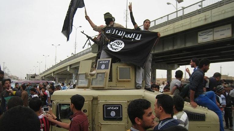 نیروهای گروه بنیادگرا و خشونت طلب دولت اسلامی