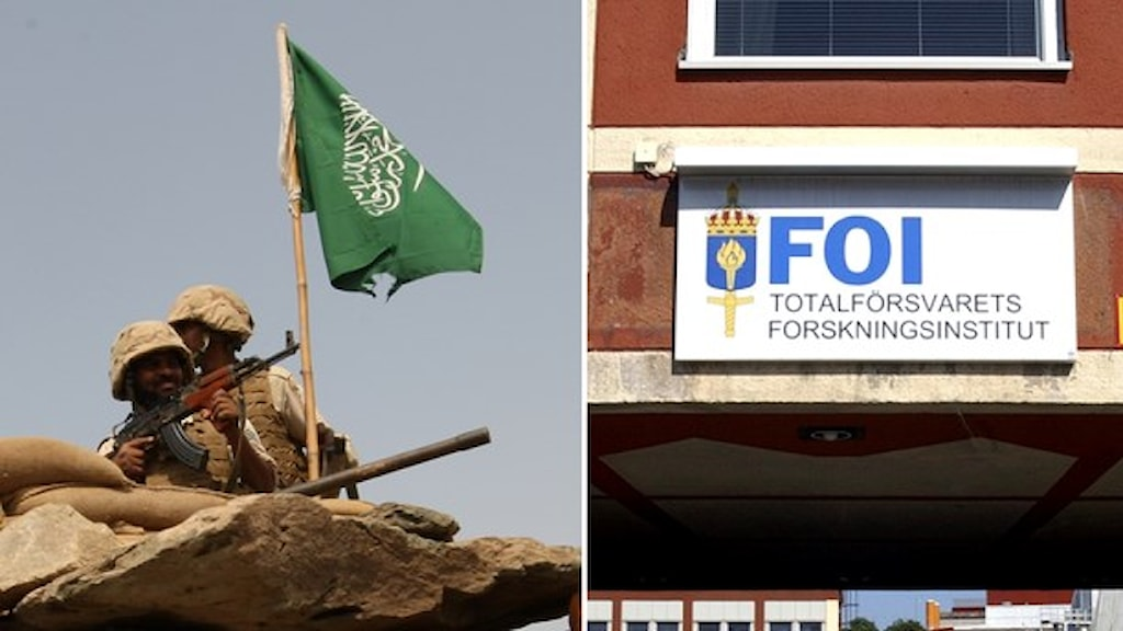 FOI och Saudivapen FOTO: TT
