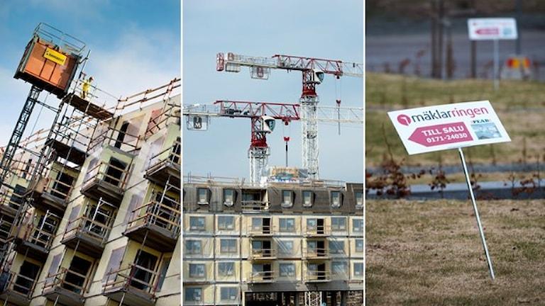 پروژه دولتی کمک به خانه سازی در مناطق کم جمعیت با موفقیت روبرونشده است Foto: Maja Suslin/TT, Claudio Bresciani/TT, Fredrik Sandberg/TT