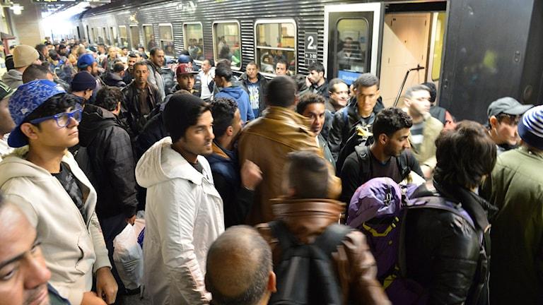 Jonas Ekströmer/TT  لحظه ورود شماری از پناهجویان به سوئد