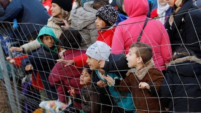 در رابطه با پناهجویان ، ترکیه شش میلیارد یورو دریافت خواهد کرد