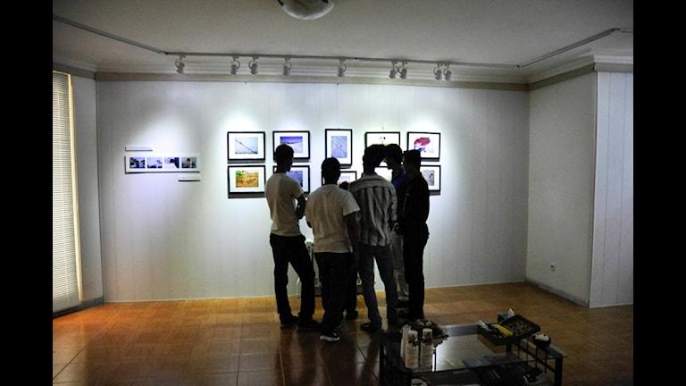 """عکس از نمایشگاه """"جهان از نگاه من"""""""