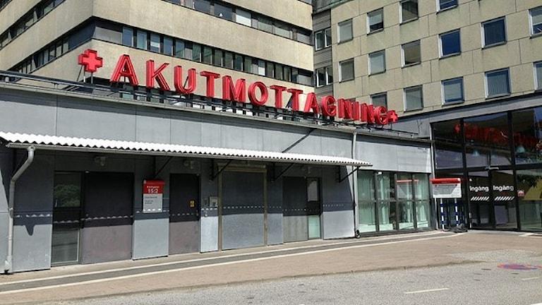 Foto: Tobias Wallin/Sveriges Radio
