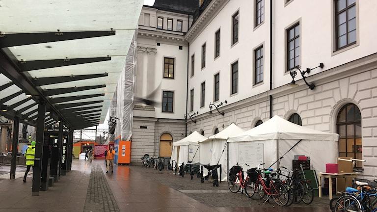 Foto: Shakila Edizada/Sveriges Radio
