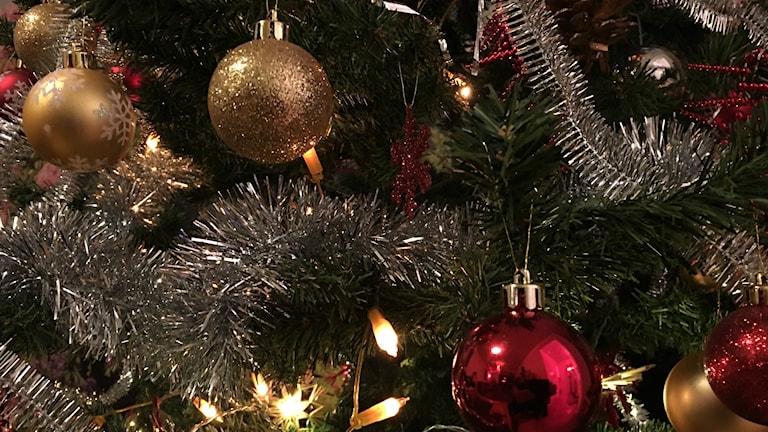 سال نو میلادی بر شما مبارک. Foto: Persiska redaktionen/Sveriges Radio