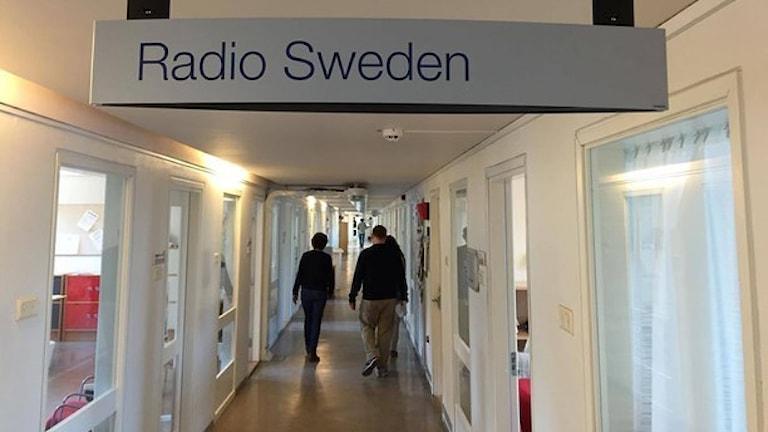 Foto: Sveriges Radio