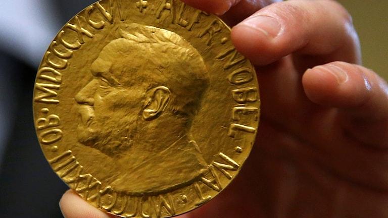 جایزه نوبل صلح از سال ١٩٠١ تاکنون به ١٢٩برنده اهدا شده است.