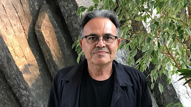 غنی مجیدی استاد اقتصاد در دانشگاه میلردالن.