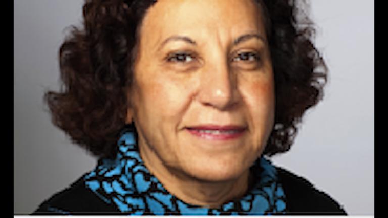 ماجدة أيوب تتحدث عن القضايا التي تواجه مؤتمر المسيحيين الديمقراطيين