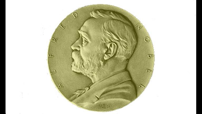 جائزة نوبل 2011