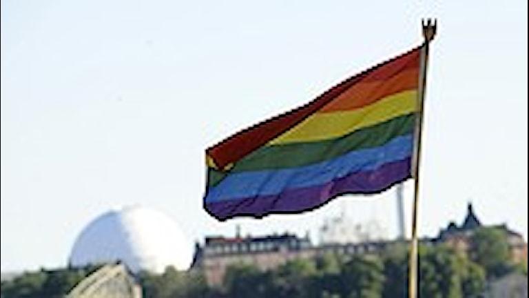 المتحولون جنسيا اكثر الفئات تعرضا للعنف/الصورة بيريل اريكسون:سكانبكس