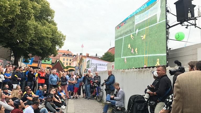مشجعو المنتخب السويدي في غوتلاند