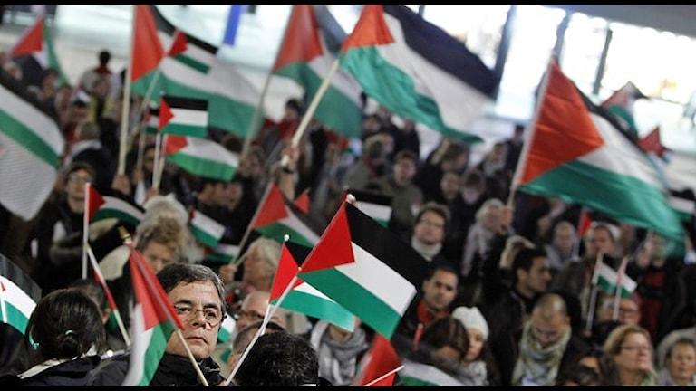 الصورة من مهرجان أقيم في ستوكهولم عام 2011 للمطالبة بدعم عضوية فلسطين في الأمم المتحدة TT