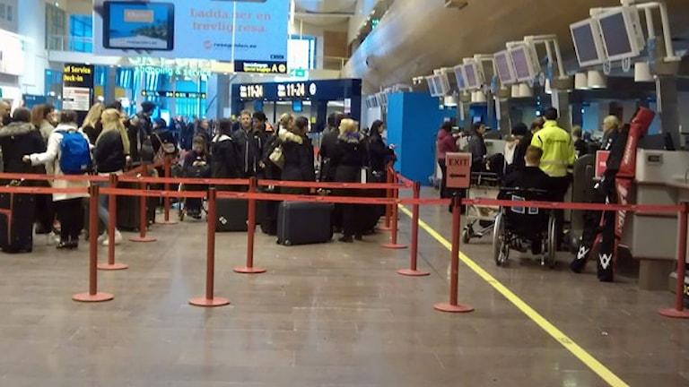 Incheckningsdiskarna på terminal 5 på Arlanda. Foto: Martin Hult/SR