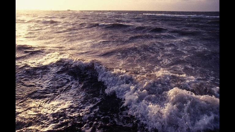 السويد تستثمر في مجال الطاقة البحرية