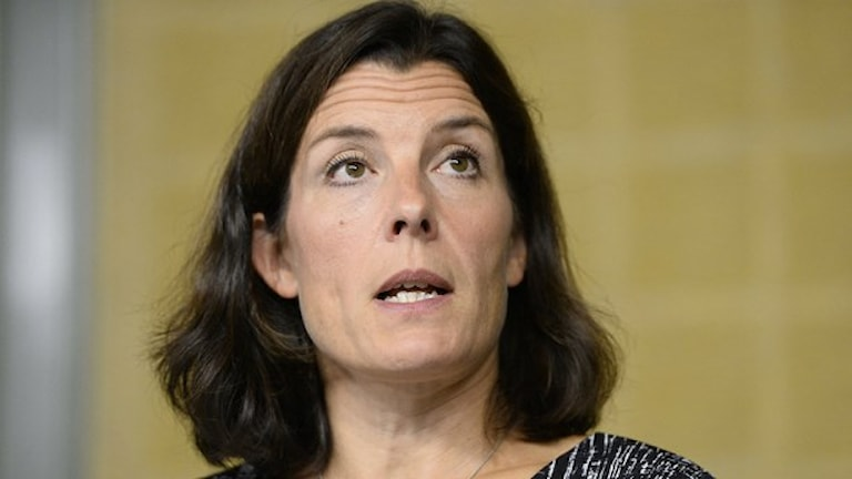 كارين اينستروم، المتحدثة باسم السياسة الخارجية لحزب المحافظين. صورة: مايا سوسلين / TT