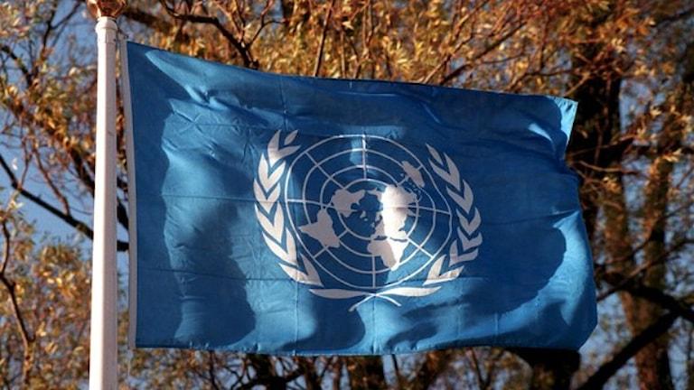 علم الأمم المتحدة / صورة يانيريك هنريكسون TT