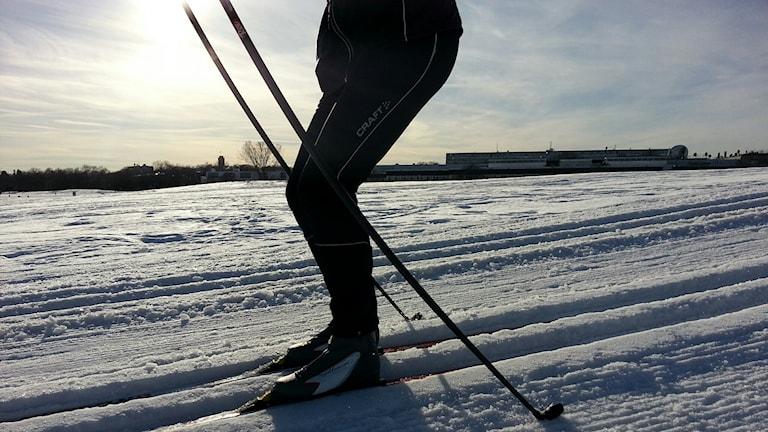 Kvinna åker skidor. Foto: Firas Jonblat / Sveriges Radio