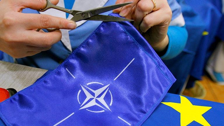 علم حلف الناتو