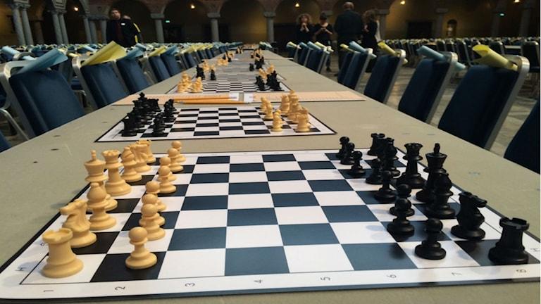 فترة إعداد رُقَع الشطرنج قبل دخول التلاميذ / صورة عبد العزيز معلوم SR