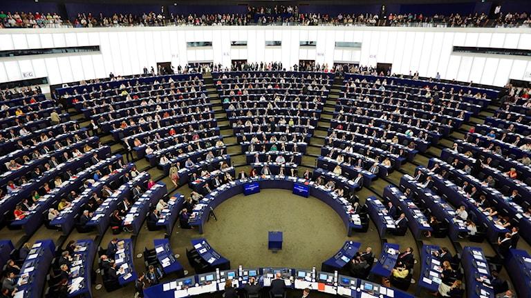 مبنى الاتحاد الأوروبي في ستراسبورغ.