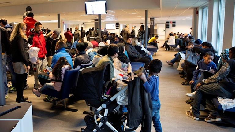 Беженцы в иммиграционном центре Мальмё. Фото: Drago Prvulovic/TT