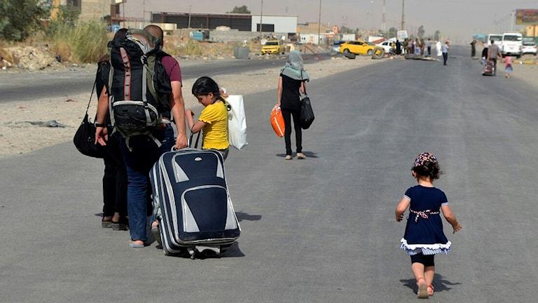 الصورة لأسر تهرب من الموصل بعد إحتلالها من قبل داعش صيف 2014