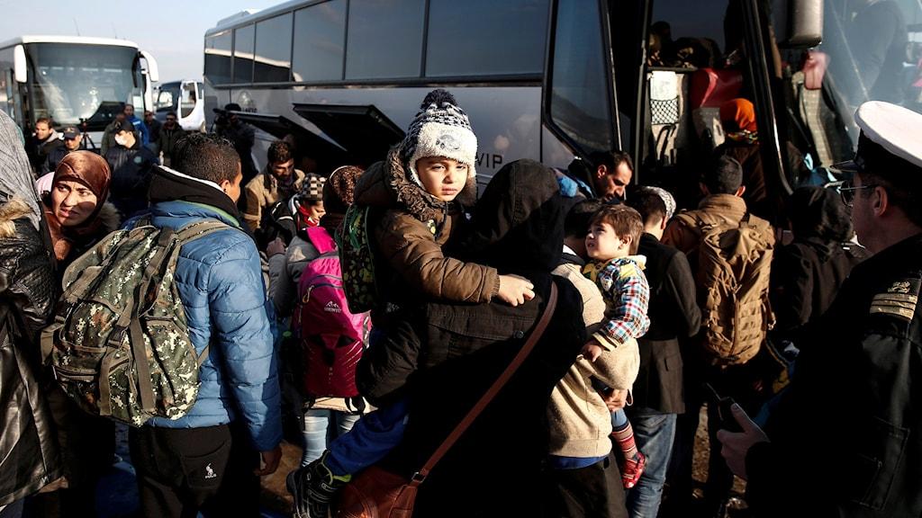 لاجئين في اليونان.
