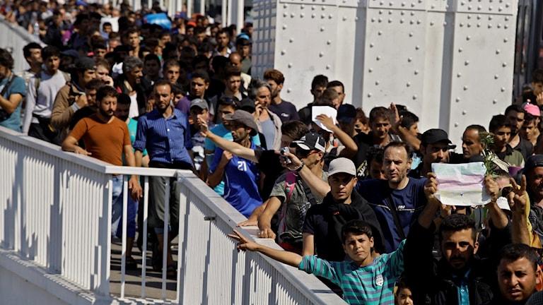 لاجئون في محطة بودابست.