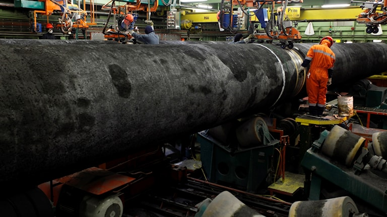أنابيب الغاز الروسية في ألمانيا.