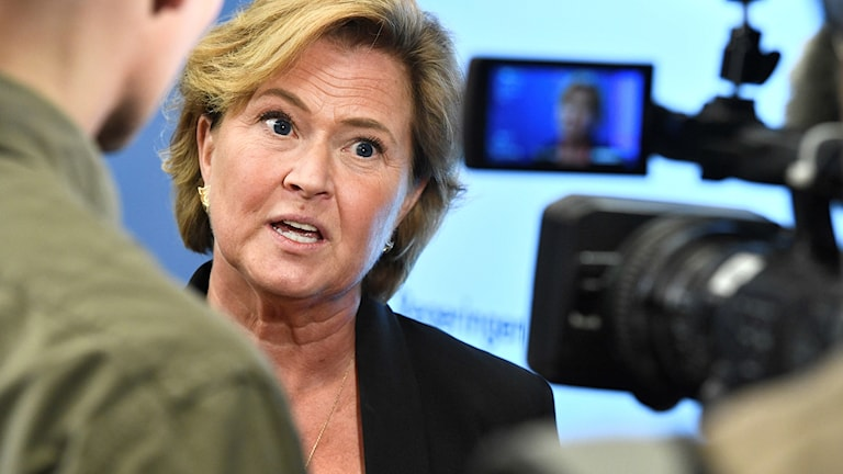 Maria Hemström-Henningsson presenterades på fredagen som ny tillförordnad generaldirektör för Försäkringskassan