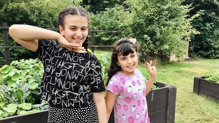 طفلتان في حديقة
