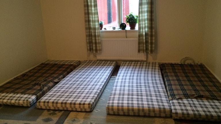 Fyra madrasser där fem personer sover i en campingstuga i Upplands Bro.