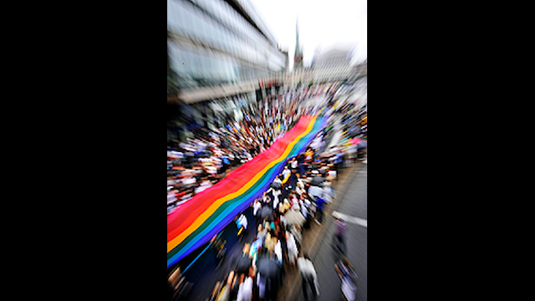 إستعراض مهرجان المثليين 2008