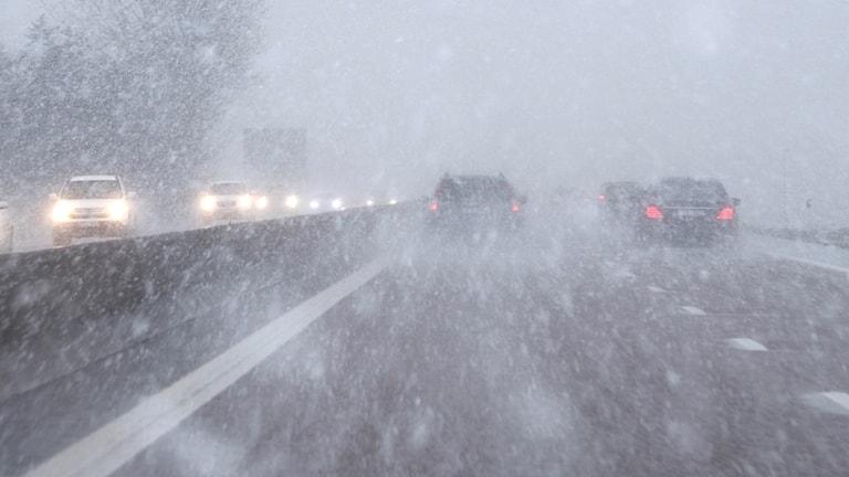 العاصفة الثلجية تؤثر على حركة الحياة في الشمال