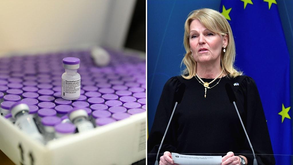vaccinflaskor och bild på handelsminister Anna hallberg