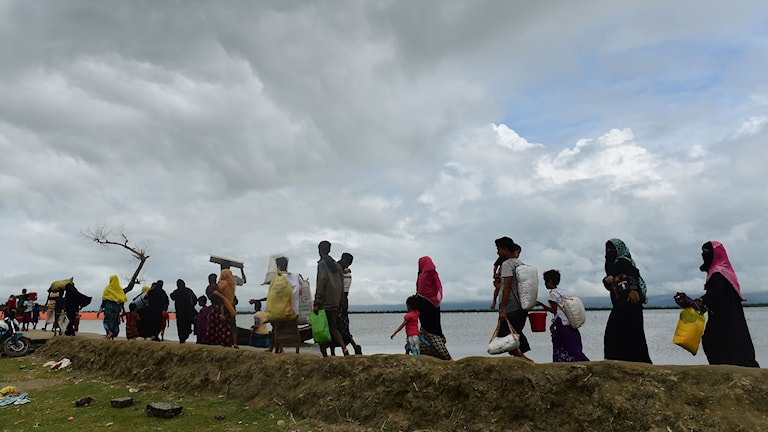 Rohingya Muslim refugees arrive from Myanmar after crossing the Naf river