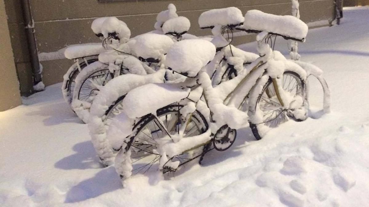 Snö i Sundbyberg