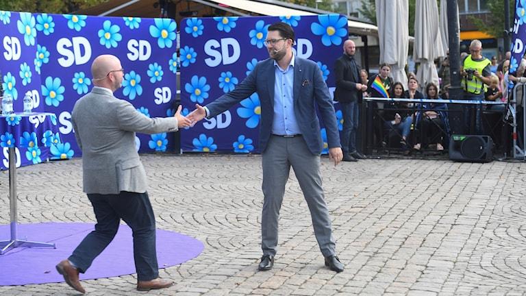 رئيس حزب ديمقراطيو السويد يمي أوكسون، شالي فيميش