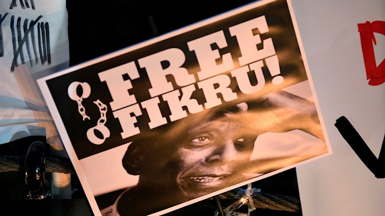 En manifestation för frigivandet av läkaren Fikru Maru