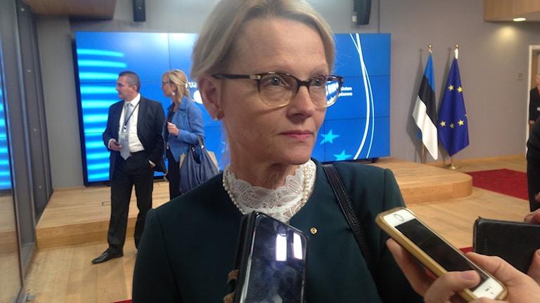 Helene Fritzon, migrationsminister